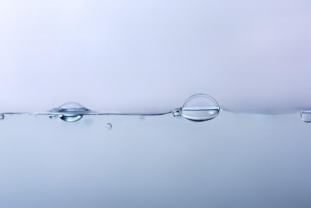 イモリの飼育で重要となる水替えの方法について