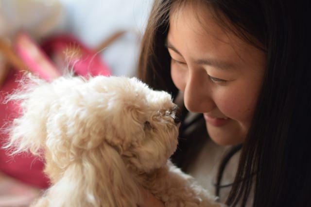 いざという時に備え、愛犬にマイクロチップを!