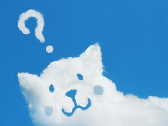 犬の耳ダニの正体は何か?